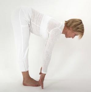 Andere Yoga Opleidingen en Lessen